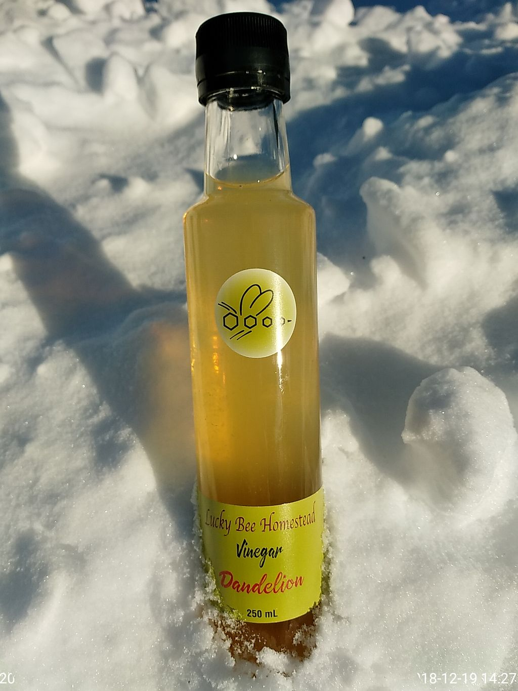 A bottle of Dandelion vinegar in a snow bank