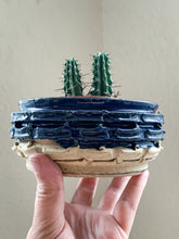 Load image into Gallery viewer, Blue & Tan Weave Planter - by Sophia Grace Collection
