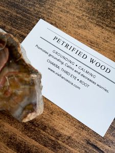 Medium Petrified Wood Specimen with Polished Top - Grounding // Calming
