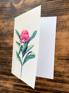 Waratah Floral Notecard - Single or Set of 5 - by Curated Dry Goods