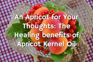The Healing Benefits Of Apricot Kernel Oil