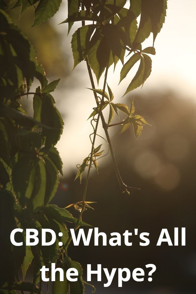 CBD: What's All The Hype?