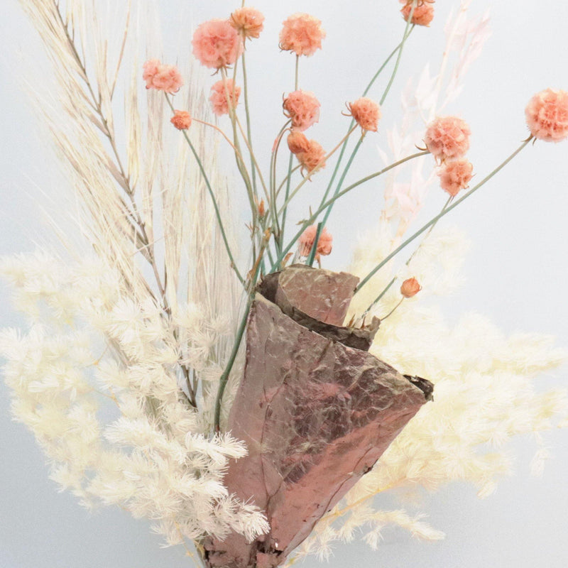Coral Crush DIY Kit - Flowers Across Australia