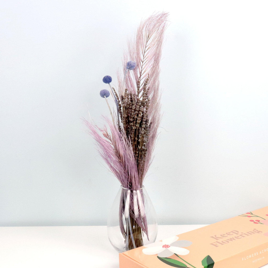 Purple Haze DIY Kit - Flowers Across Australia