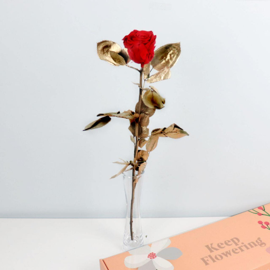 Preserved Rose - Gold Leaf |  Single Stem - Flowers Across Australia