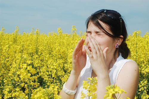 Ways to Stay Allergy-Free this Season