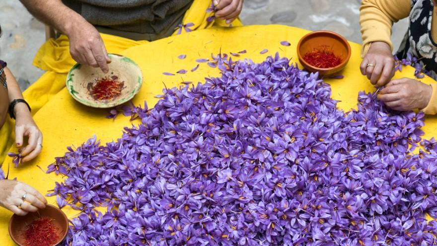 Saffron's Health Benefits