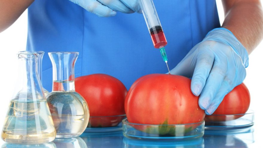 Genetically Modified Foods: Pros, cons & how to avoid them