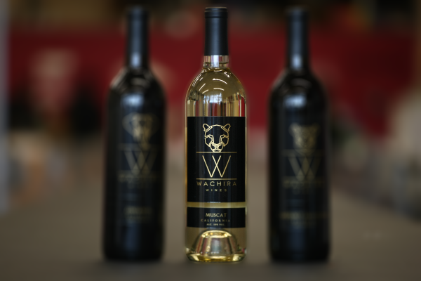 Where to find wachira wines
