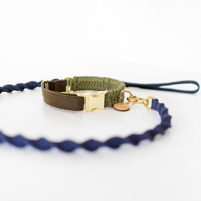 Macramé dog collar in green and a macramé dog leash in blue with gold hardware