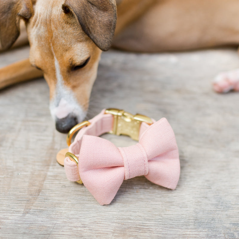 pink linen dog bow tie