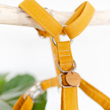 Strap dog harness in mustard yellow linen