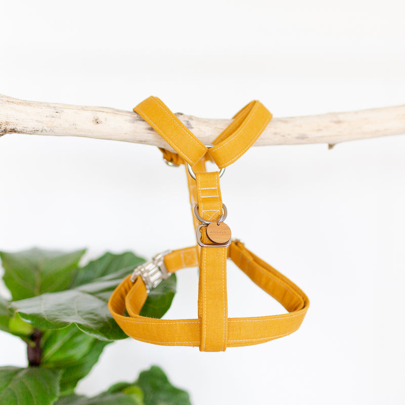 Large dog harness in mustard yellow linen with silver hardware