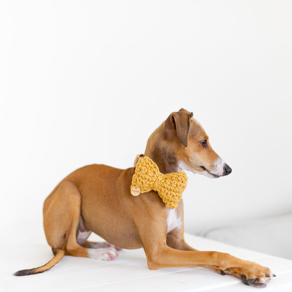 Leo Recycled Cotton Bow Tie - Mustard