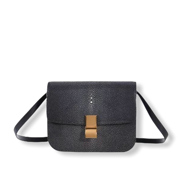 'Old Céline' Medium Classic Box Bag Black Stingray