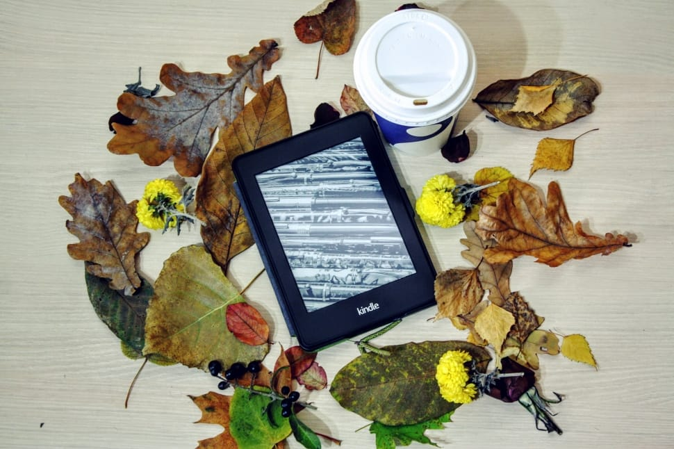 Can the eReader co-exist with our local Bookstores?
