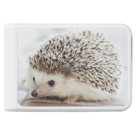 Cute Baby Hedgehog Power Bank