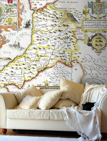Map Wallpaper - Vintage County Map - Cardiganshire