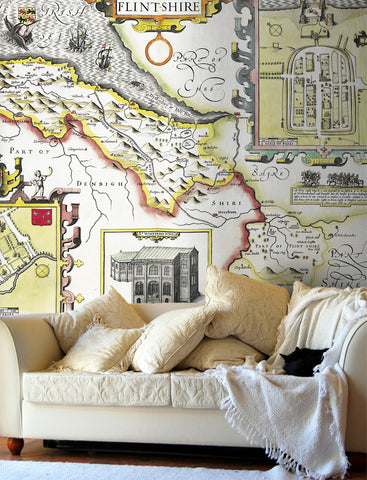Map Wallpaper - Vintage County Map - Flintshire