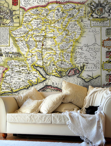 Map Wallpaper - Vintage County Map - Hampshire