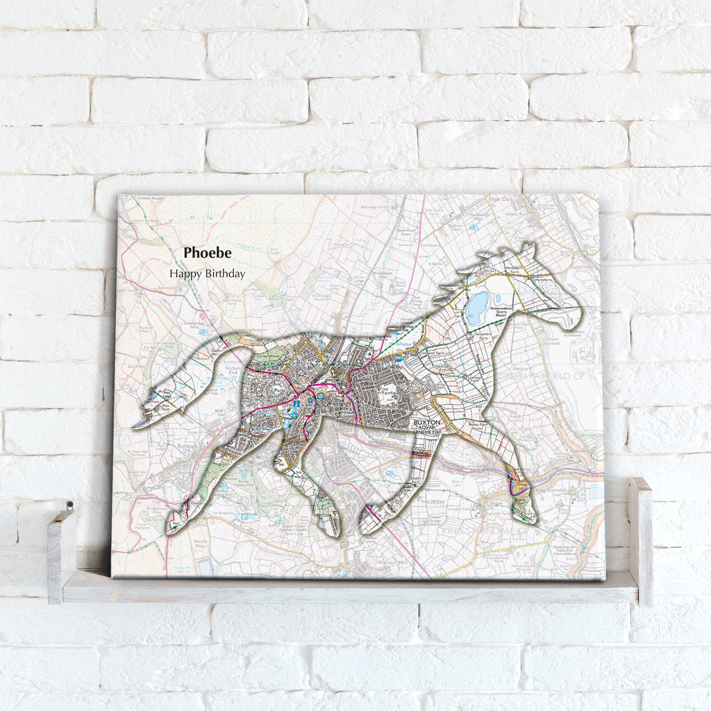 Personalised Horse Map