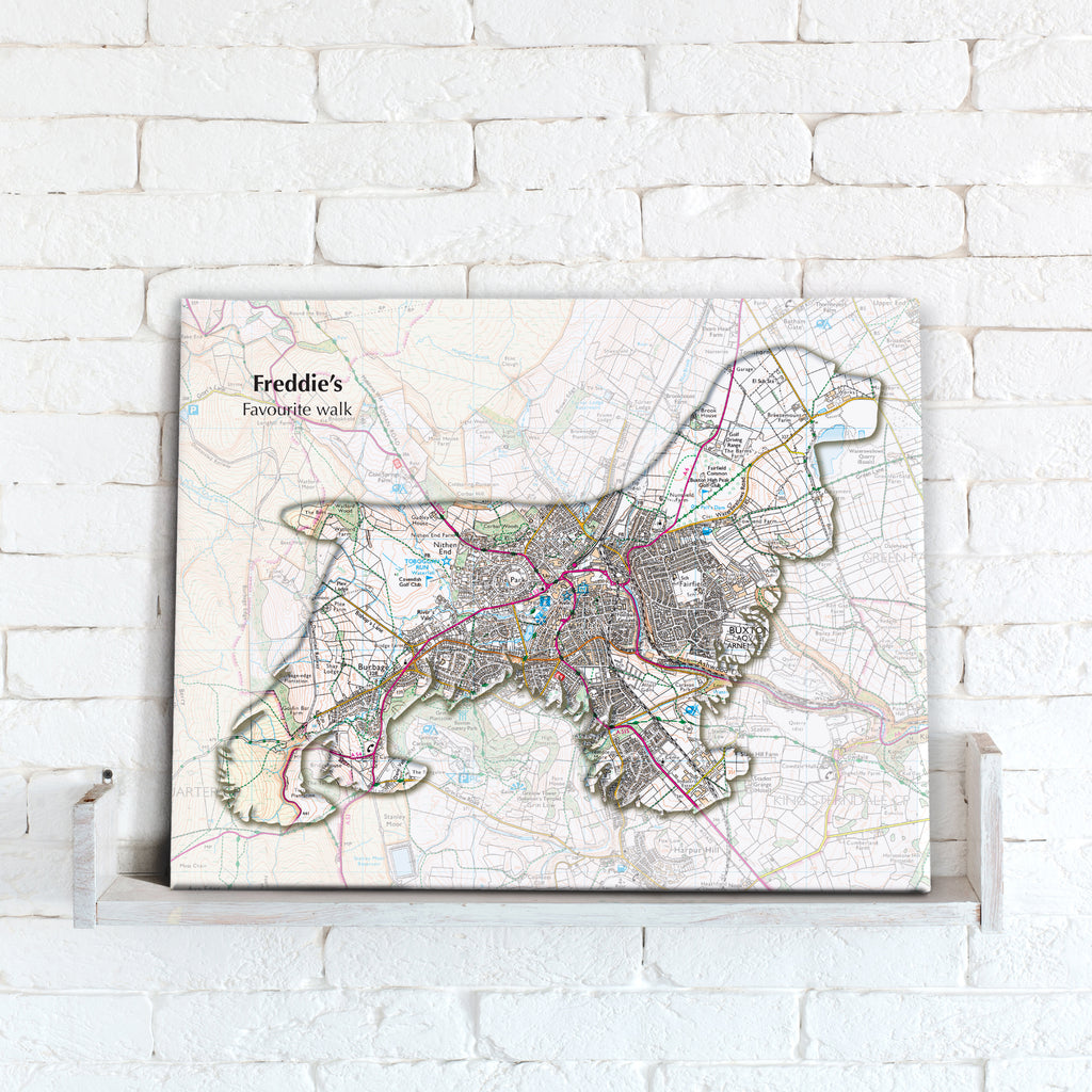 Personalised Spaniel Map