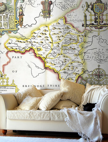 Map Wallpaper - Vintage County Map - Radnorshire