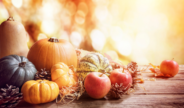 seasonal food for autumn for healthy body
