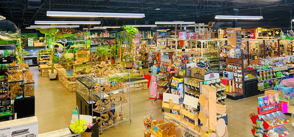 pet world lawrence in-store look
