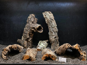 Nano Corkbark | 3/4 lb. Selected | #005