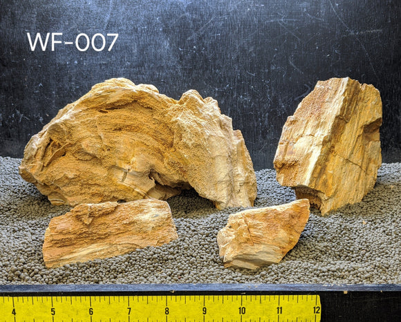 Red Wood Fossil Stone | 10 lbs. Selected | #007