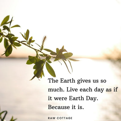 The Earth gives us so much. Live each day as if it were Earth Day. Because it is.
