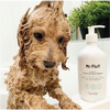 Mr Fluff - 2 in 1 Conditioning Shampoo You Had me at Aloe - 500ml - Raw Cottage
