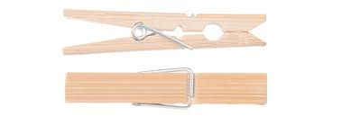 Go Bamboo - Clothes Pegs - Raw Cottage