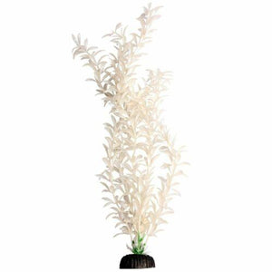 Aqua One Brightscape X-Large Ludwigia White Plant