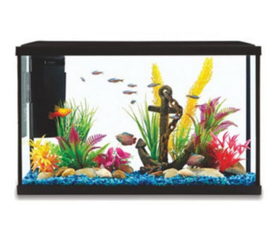 Aqua Care Starter Kit Glass Aquarium 38L with LED Light and Filter