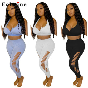Sexy Hole Backless Solid Color Zipper Two-Piece Suit Women Leisure Long Pants Set Crop Tops Gym Fitness Casual Jogger Leggings - DivaJean