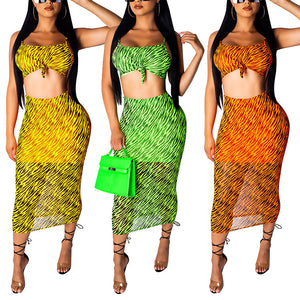 Sexy Mesh 2 Pieces Summer Set Outfit Women Sleeveless Backless Crop Top and Long Skirt with Inside Lining Casual Matching Sets - DivaJean