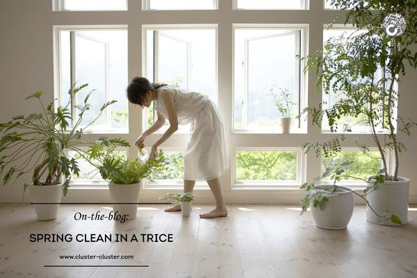 Spring Cleaning Tips for CNY