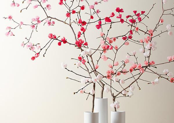 Stylish & Simple Decor for CNY