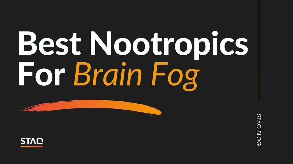 Best Nootropics For Brain Fog: Our Top 4 Recommendations