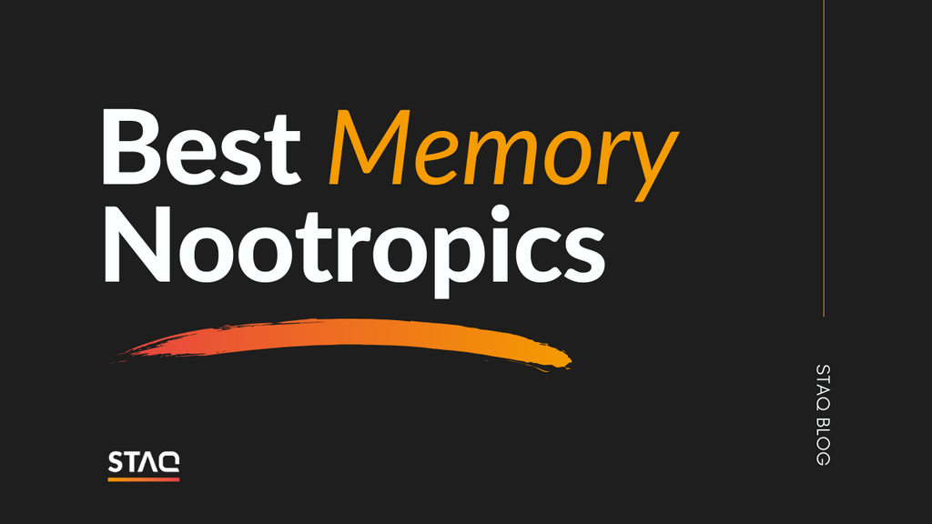 Best Nootropics For Memory: Our Top 3 List
