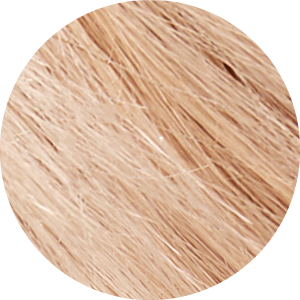 Tints of Nature Natural Platinum Blonde Hair Dye - 10N - Free of Ammonia Vegan Friendly