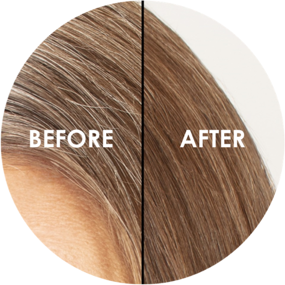 Provoke Touch Of Brunette, Grey Blending Shampoo