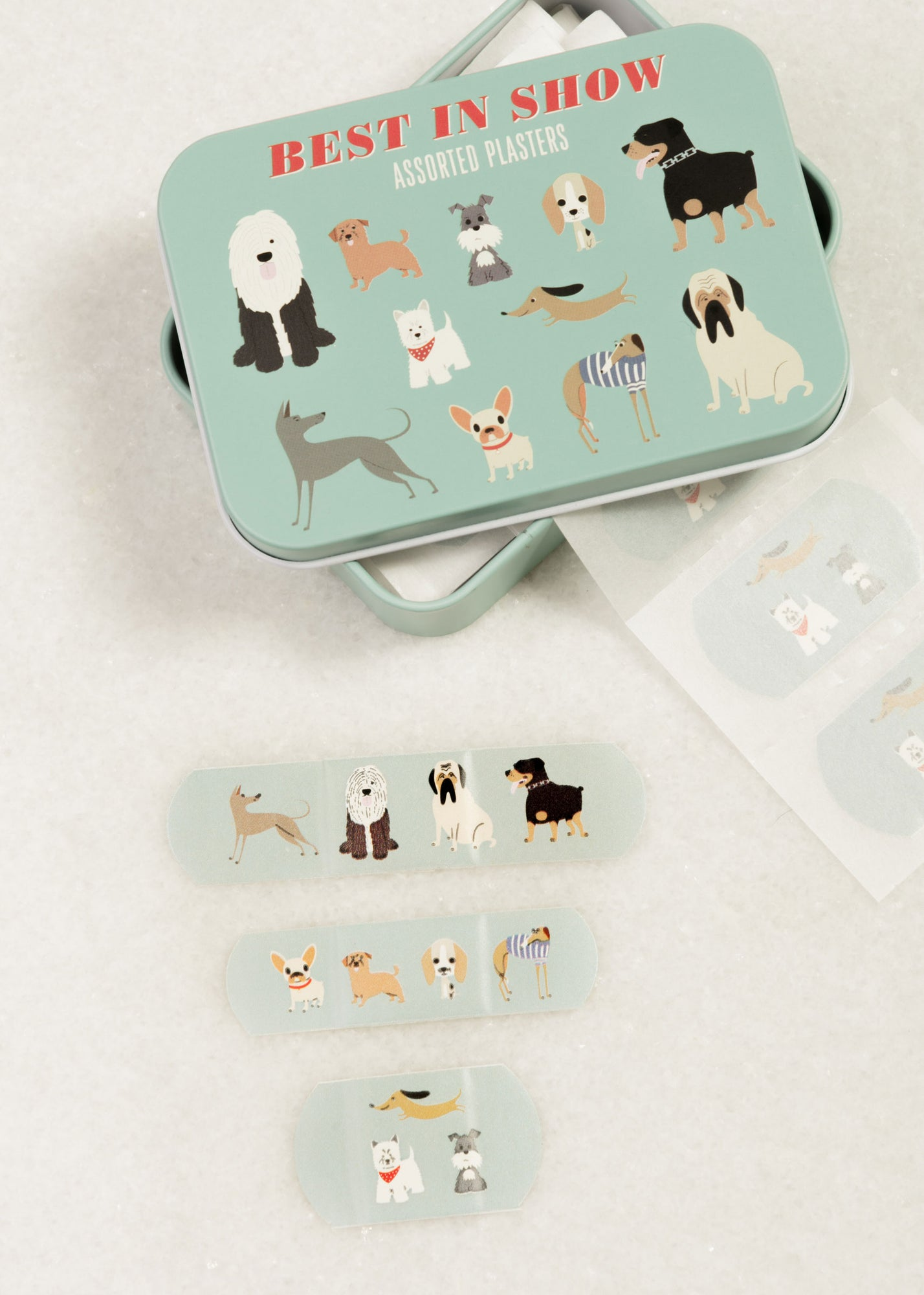Best In Show Plasters in a Tin
