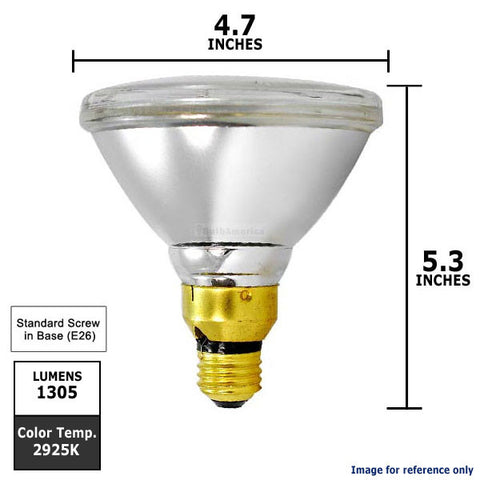 PAR38 Narrow Flood 25 Bulb