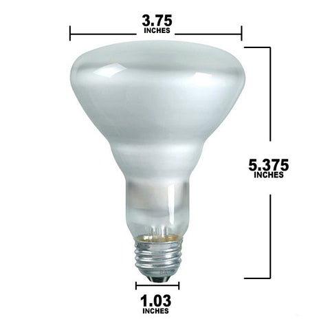 Dimensions for BR30 Bulb