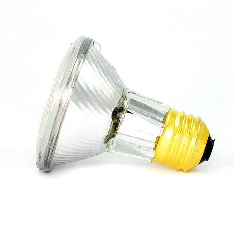 50W 120V PAR20 WFL40 E26 Halogen Light Bulb