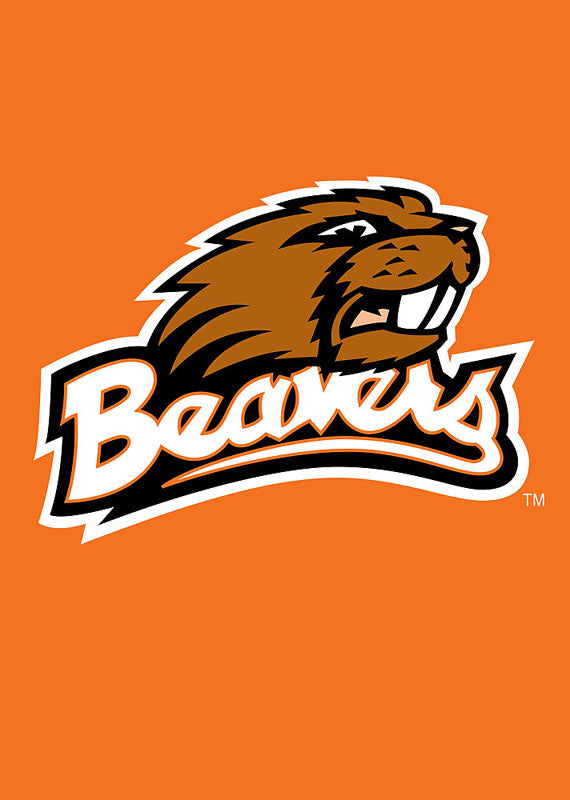 Load image into Gallery viewer, Oregon State University Beavers Double Sided Applique Garden Flag; Polyester