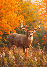 "Load image into Gallery viewer, ""Fall Buck"" Printed Seasonal Garden Flag; Polyester"